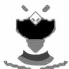 GreyKing46's avatar