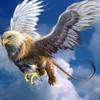 grifone01's avatar