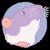 groundpear's avatar