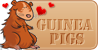 GuineaPigHearts