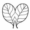 H3-six's avatar