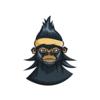 habibsensei's avatar