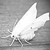 haikuricochet's avatar