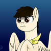 Hailblitz's avatar