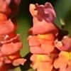 halekae's avatar