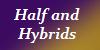 Half-or-Hybrid-OCs's avatar