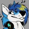 HalietheFoxx965's avatar