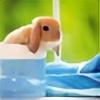 Halimede-san's avatar