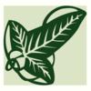 Hammingham's avatar