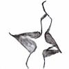 hannahdk's avatar