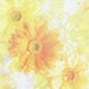 HappinessForLife's avatar