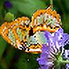 Happy-and-Free's avatar