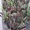 happyjack97's avatar