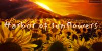 Harbor-of-Sunflowers's avatar