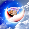 Harlixx's avatar