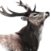 Haruhi-C's avatar