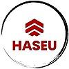 Haseu's avatar