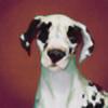 Hastrex's avatar
