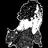 hatface1173's avatar