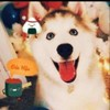 hau1212's avatar