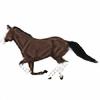 Haunches's avatar