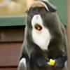hawkfeather2's avatar