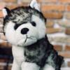 hdesign2k7's avatar
