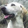 hdogwugb's avatar