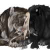 Heca-Bitch4Life's avatar
