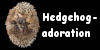 Hedgehog-adoration