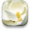 hexdef101's avatar