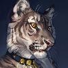 Heyriel's avatar