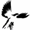 highfen12's avatar