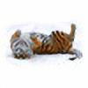highlander12's avatar