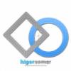 higorsomer's avatar