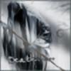 hitforsa's avatar