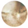 hltzmnn's avatar