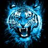HollowDrake92's avatar