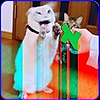 honeyoil's avatar