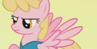 HoneyRaysFans's avatar