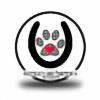 HoofbeatsnPawprints's avatar