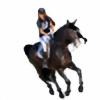 HoofHaven's avatar
