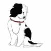 HookNCrook's avatar