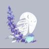 Hope1900's avatar