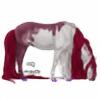 horse-queen's avatar