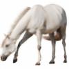 HorsePonyBFF's avatar