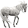 Horseryder's avatar