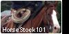 horsestock101's avatar