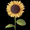 HotCoffeeStables's avatar