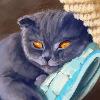 Houseart136's avatar